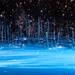 秋・冬だからこそ行きたい!北海道旅行おすすめ観光スポット6選