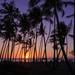 新婚旅行におすすめ!ハワイのロマンティック・スポット5選