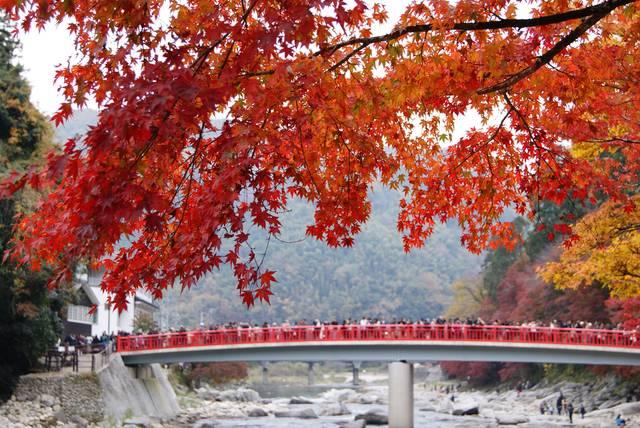 待月橋と紅葉