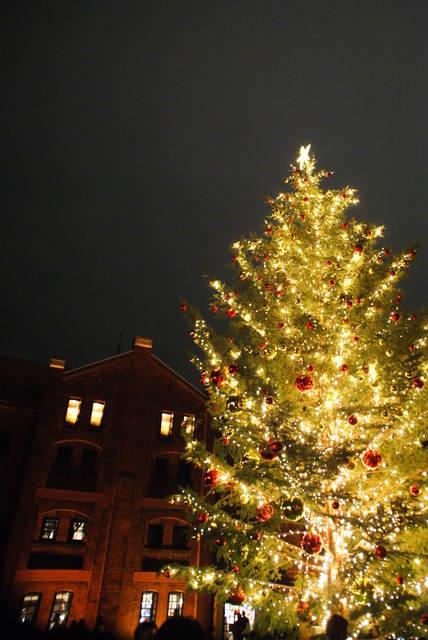 赤レンガ倉庫とクリスマスツリー