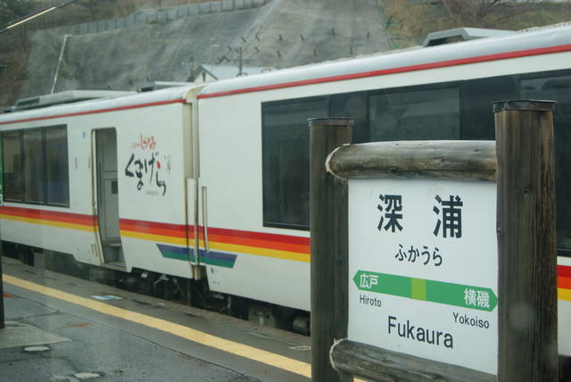 Photo by author (28331)