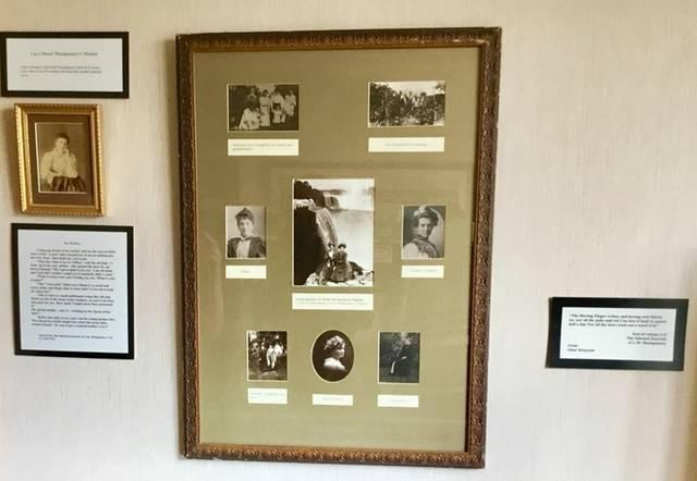 ナイアガラの滝の前で記念写真(合成)