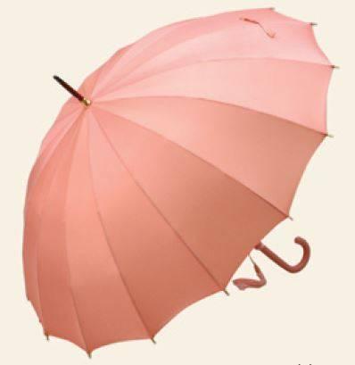 婦人用雨傘TRAD16-L