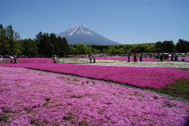 photo by tabibitokaoru (78169)