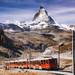 スイスの最新&定番の観光情報